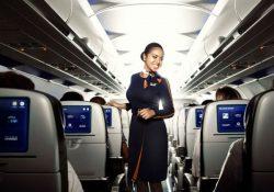 auxiliar-vuelo